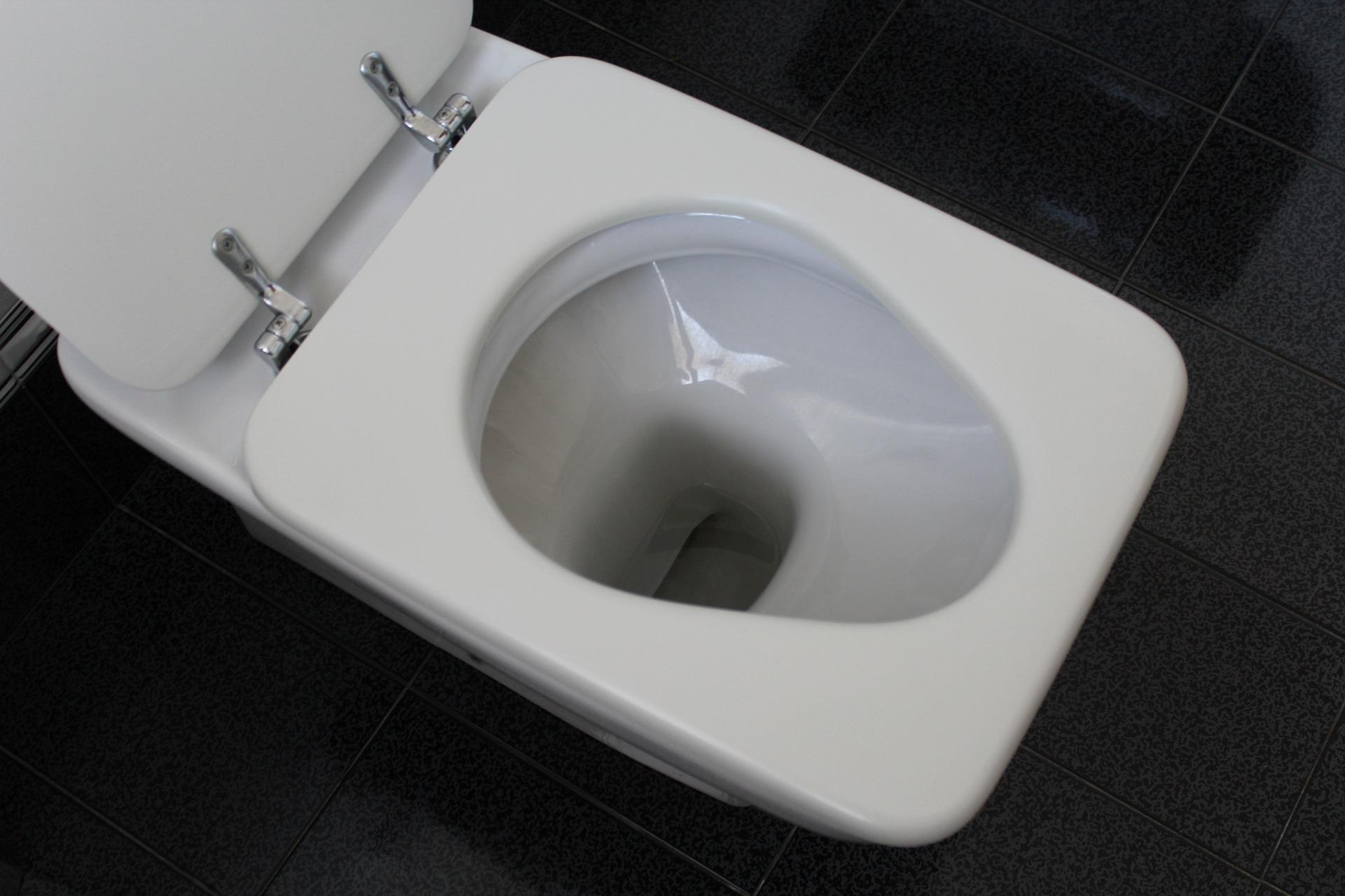 wc-lunette